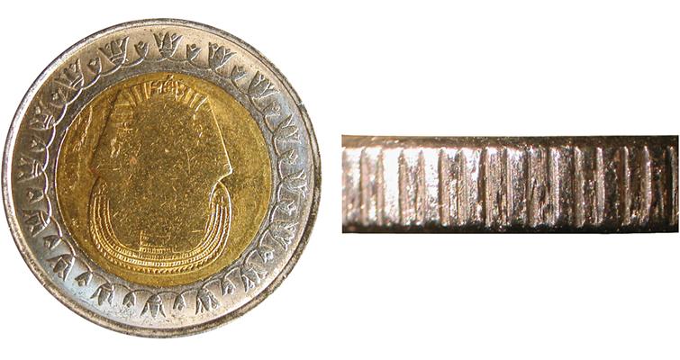 01-two-headed-mule-egypt-1pd-side1