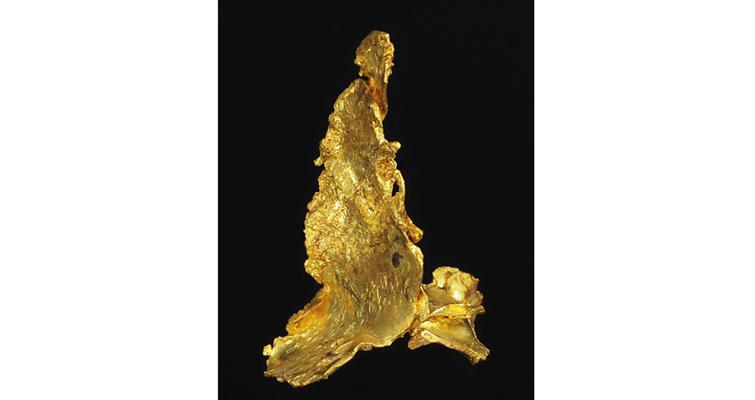1002-leaf-gold-california