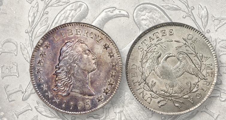 1795-dollar-lead