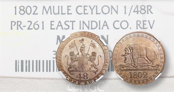 1802-ceylon-east-india-company-mule-lead