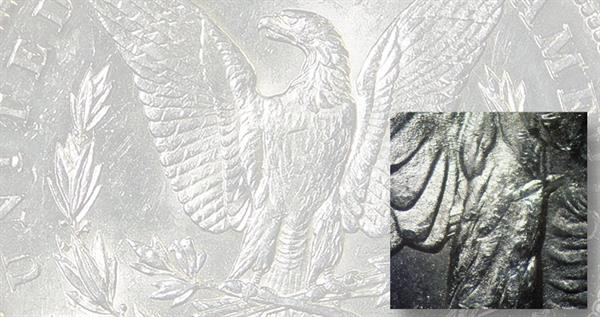 1891-s-morgan-leg-gouge-reverse-lead