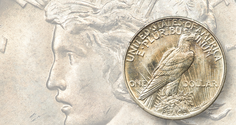 House approves 2021 Morgan and Peace dollars