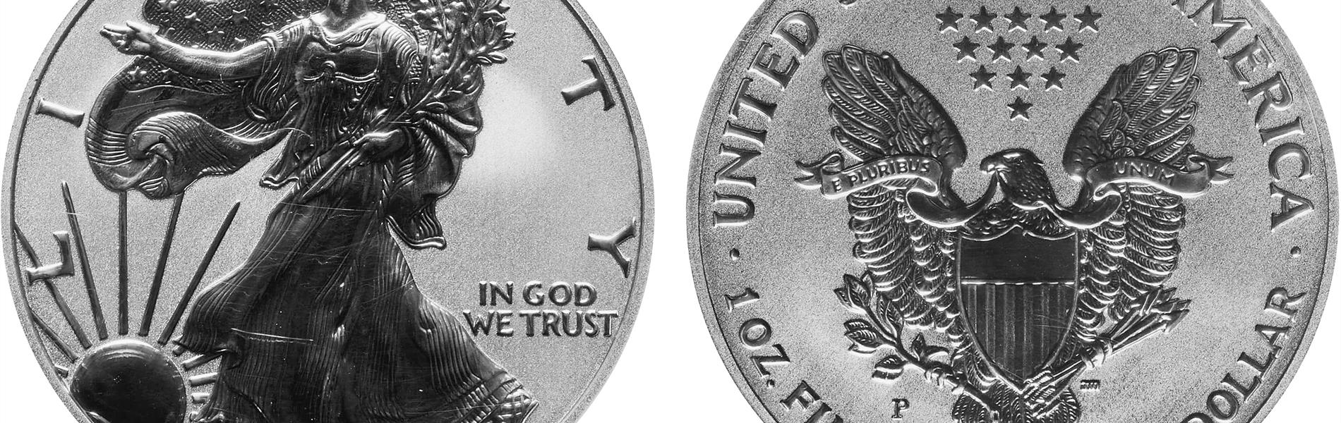 2006-p-reverse-proof-silver-eagle-merged