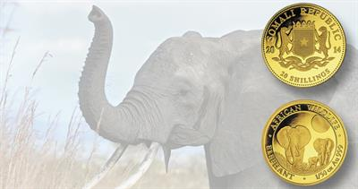 2014 Somalia Elephants gold coin