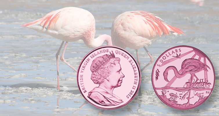Pink flamingos fill reverse of new coin from Pobjoy Mint