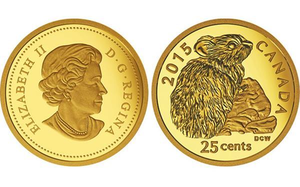 2015-canada-25-cent-rock-rabbit-gold-coin