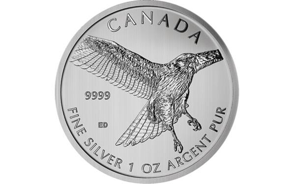 2015-red-tailed-hawk-silver-5-dollar-reverse