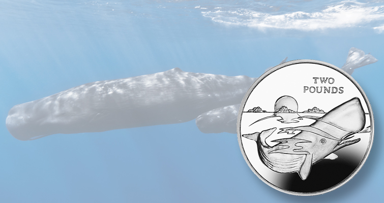 Pobjoy Mint celebrates sperm whale on collector coins