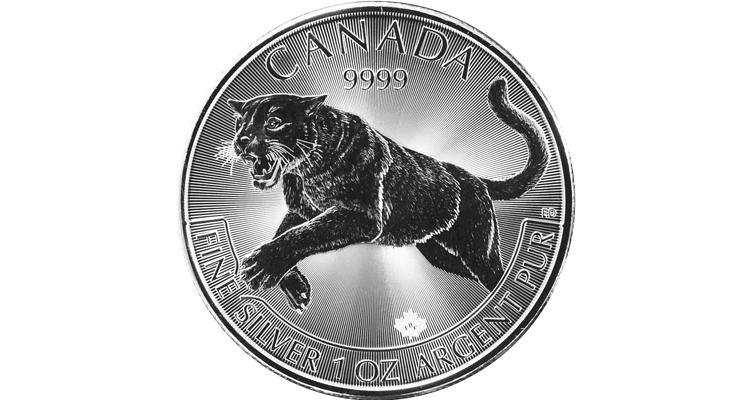 2016-canada-silver-predator-cougar-reverse