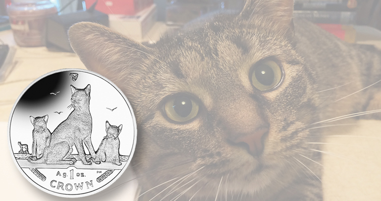 2016-isle-of-man-silver-havana-cat-lead