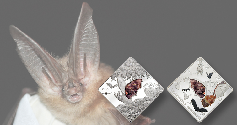 Palau celebrates bat on silver coin with color, glass insert