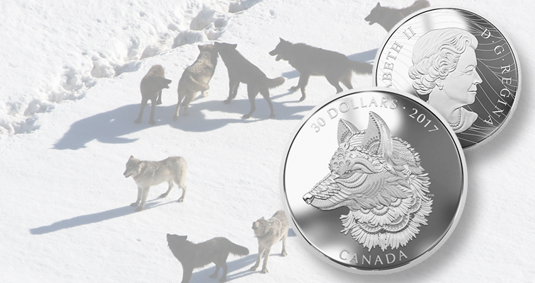 Canada showcases grey wolf on 2-ounce silver $30 coin