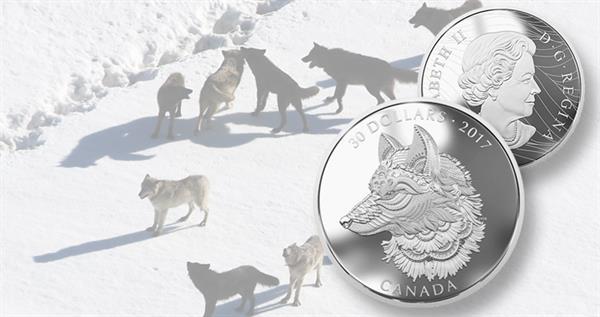 2017-canada-30-dollar-siilver-great-grey-wolf-coin-1