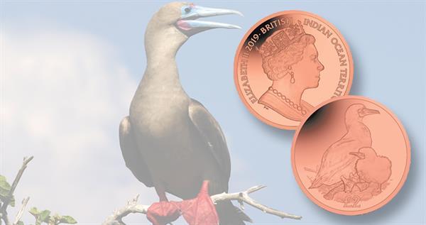 2019-biot-titanium-booby-coin