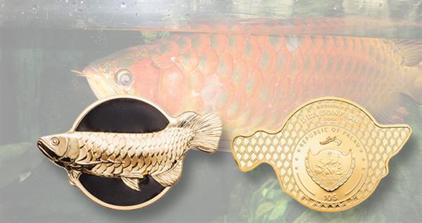 2019-palau-arowana-dragonfish-coin