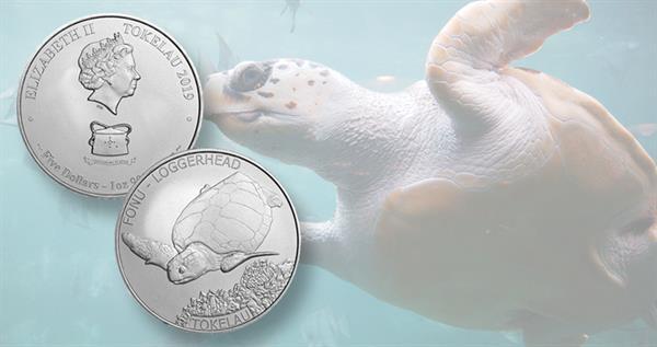 2019-tokeau-turtle-coin