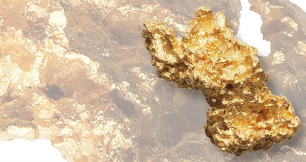 24-point-seven-gram-gold-nugget-lead