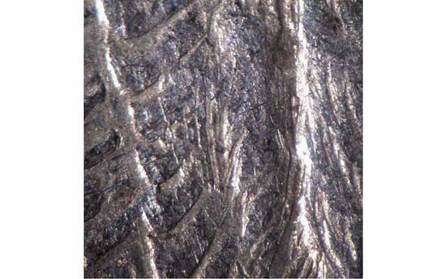 2_78-v189-center-of-wing