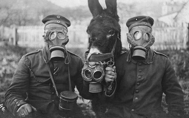 2_soldiers-and-mule-wearing-gas-masks