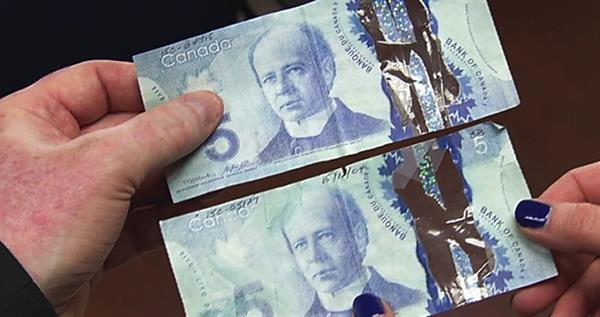 altered-canada-5-dollar-note-lead