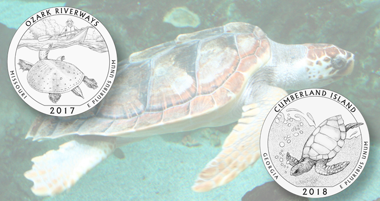 CCAC twice favors turtle designs for America the Beautiful quarter dollars