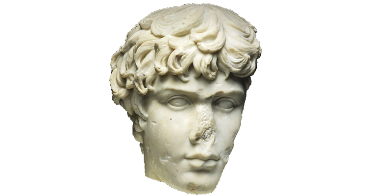 fragment of a marble portrait head of Antinous