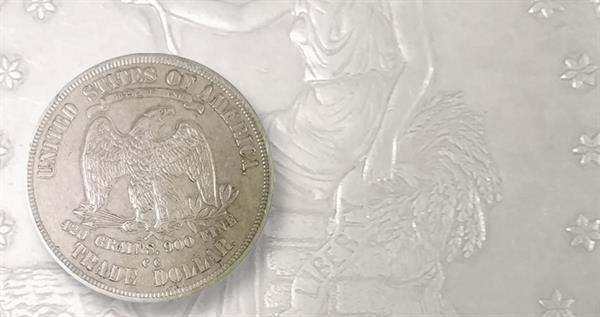 fake-1877-cc-tradfe-dollar-lead