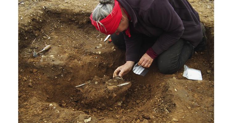 hoard-excavation