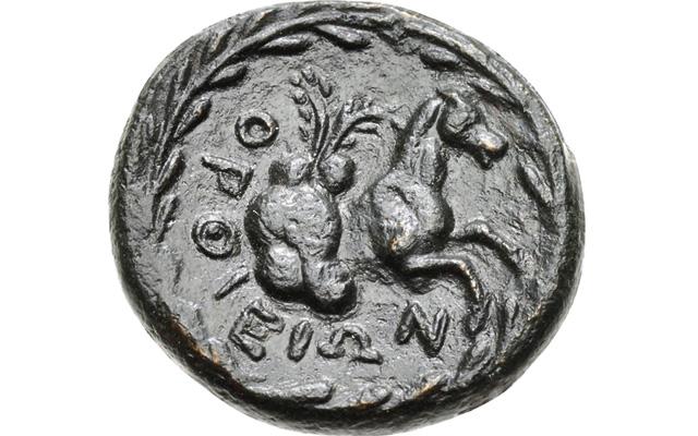 image-01-skyphios-horse-coins