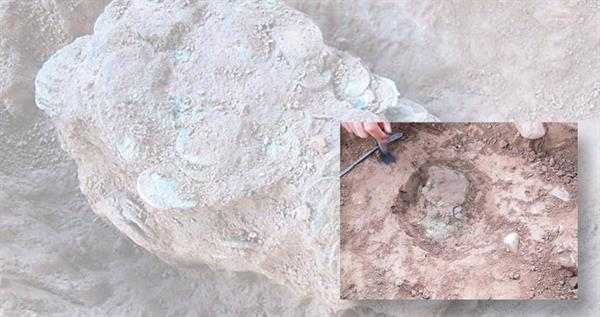 leominster-hoard-lead-image