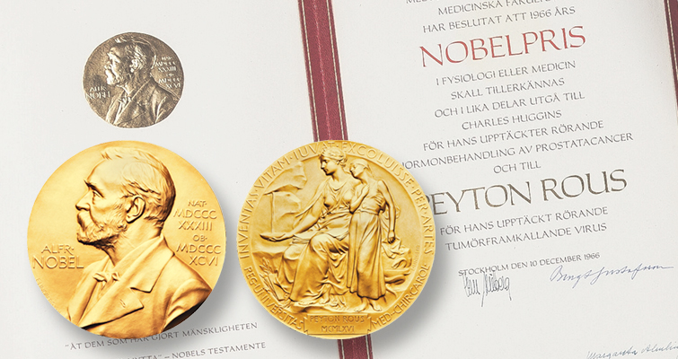 Two Nobel Prize gold medals sell at auctions by two firms days apart