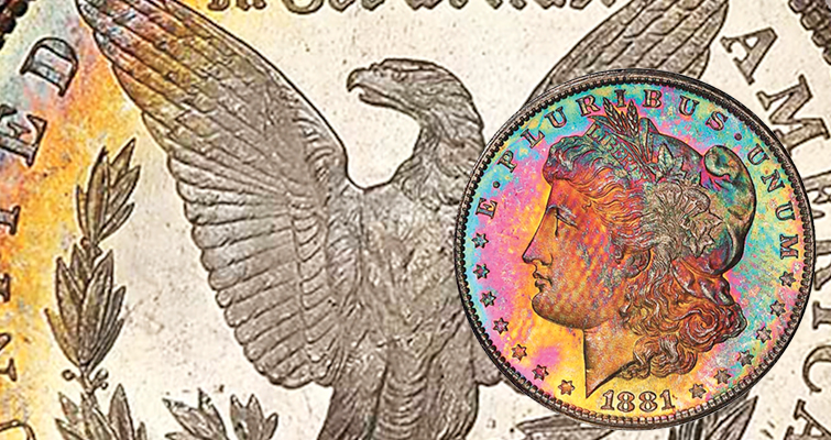 Does Liberty have 'freckles'? She does on this toned Morgan dollar