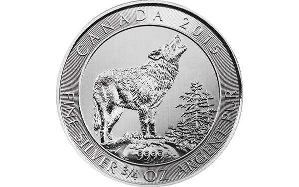 silver-grey-wolf-reverse