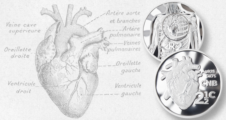 South Africa honors a medical milestone, the first heart transplant ...