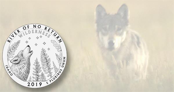 wolf-no-return-idaho-lead